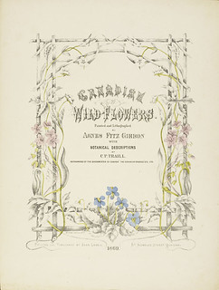 """Frontispiece of """"Canadian Wild Flowers."""" / Page titre de l'ouvrage Canadian Wild Flowers"""