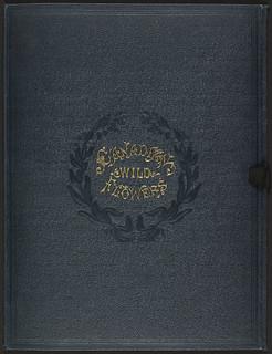 Case for Canadian Wild Flowers / Coffret de l'ouvrage Canadian Wild Flowers