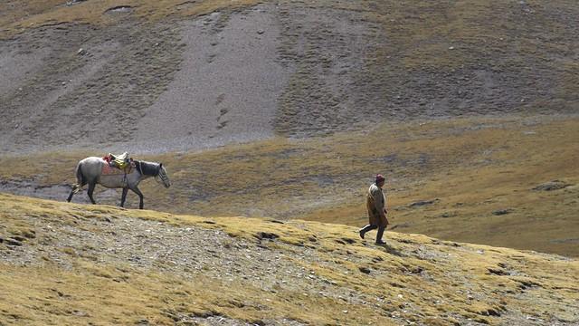 Tibetan nomad with horse, Tibet 2018