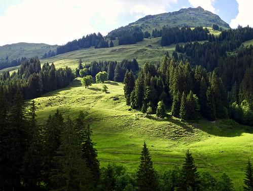 saalbachhinterglemm pinzgau mountains alps alpen austria österreich oostenrijk forsthofalm salzburg shadow schaduw light lightanshadow schatten