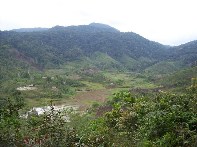 Forest fragments in Mangevo, Madagascar