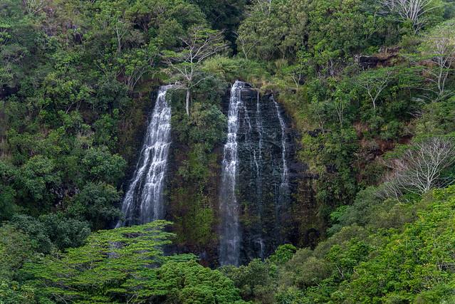 Opaeka'a Falls, Kauai, Hawaii, USA