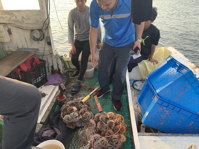 澎湖縣政府環保案件查察小組4日晚間查獲漁船違法採捕海膽,農漁局表示,此次在船上不只查獲帶殼海膽,還有已去殼、約2公斤的生殖腺,不少漁船會將採捕起來的海膽去殼保存,規避港口巡檢。
