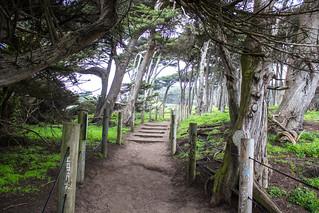 A Good Path. Upper Trail at Sutro Baths