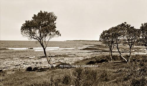 "Circa 1928 - ""No. 576 - NR. SHELLEY BEACH, CRONULLA, N.S.W."" (real photo postcard, sepia duo-tone version)"
