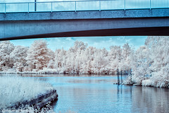 Park and bridge