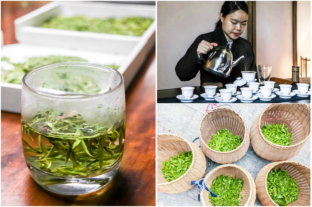 longjing-tea-hangzhou-alexisjetsets
