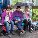 Seniorenwanderung Rheinfelden 06.06.2019