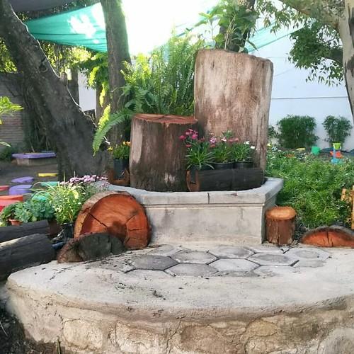 Plantas en el Centro Freinet Prometeo