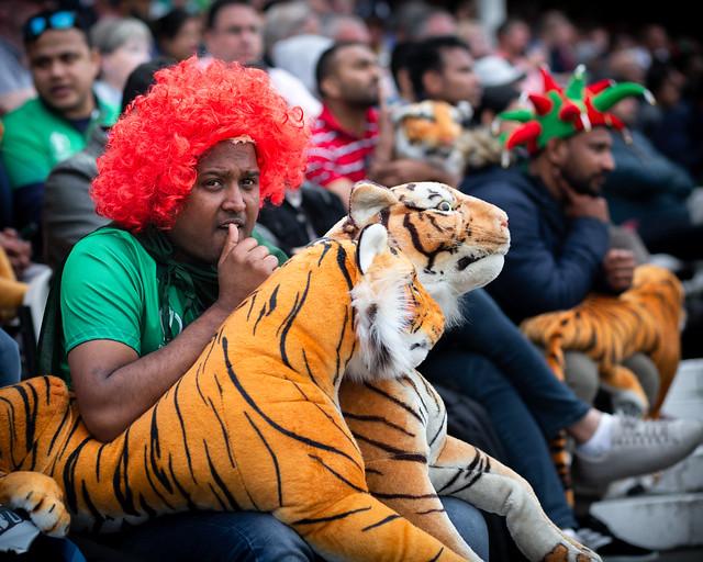 The Tiger Tamer