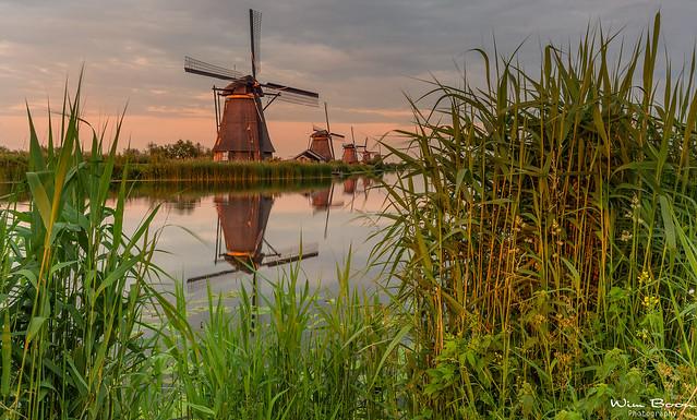 Yesterdays Sunset in Kinderdijk