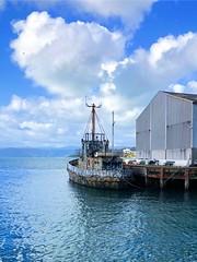 Boat, Wellington, NZ