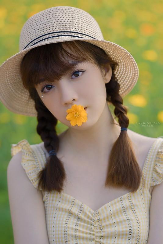stock chân dung hoa bướm đẹp