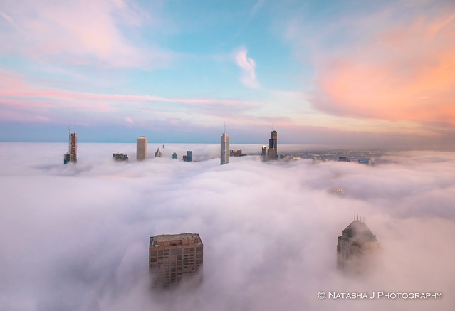 I want to dive into the fog.... Gorgeous Sunset in Chicago