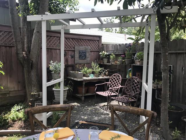 Tan Family Reunion - garden