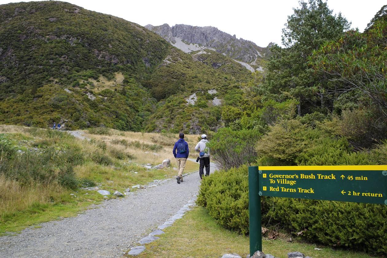 レッドターントラック登山口