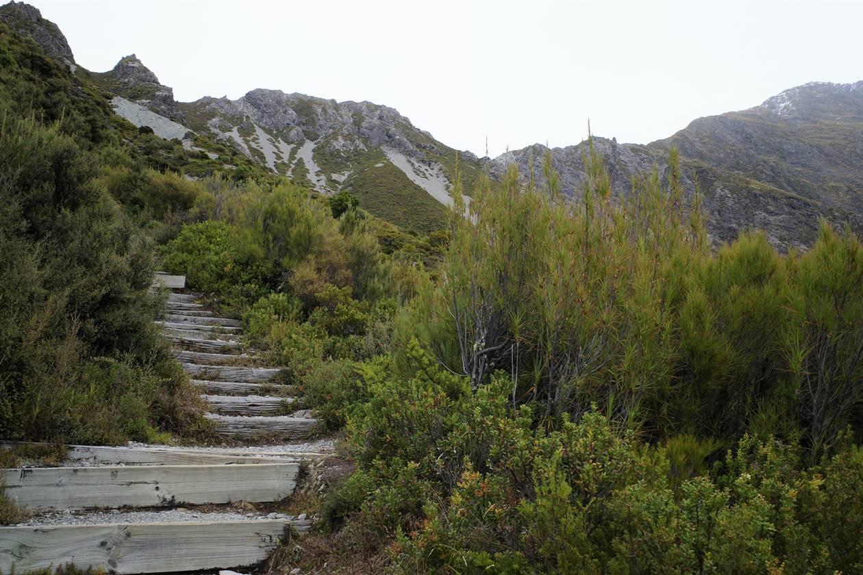 マウントクック・レッドターントラック階段の登山道