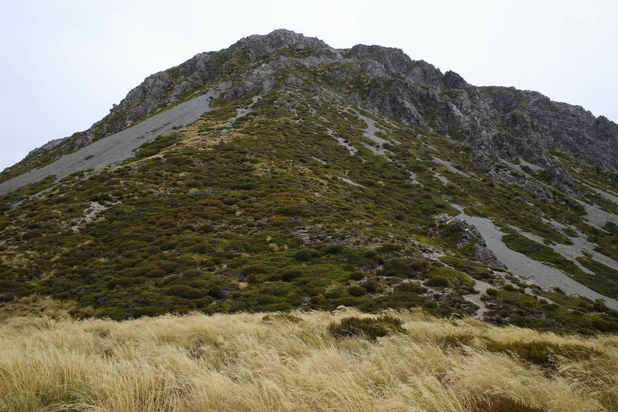 レッドターントラックの岩山