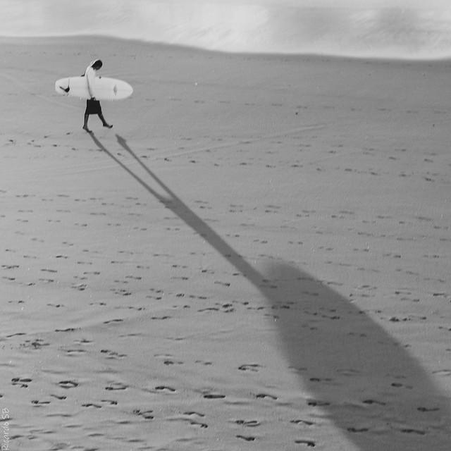 El último surfista