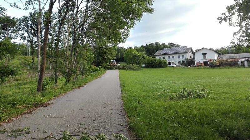 SturmschadenGeisberg-4