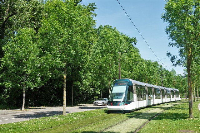 Alstom Citadis 403 n°2039  -  Strasbourg, CTS