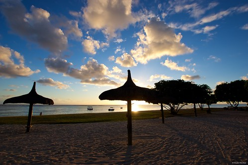 maradiva flicenflac mauritius flic en flac reflections palms pool swimmingpool infinitepool palmtree morning pentax pentaxk3ii pentaxcamera pentaxart sigma sigma1020 sigmalens sigmaart