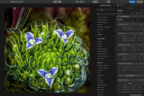 Image of Luminar Flex interface