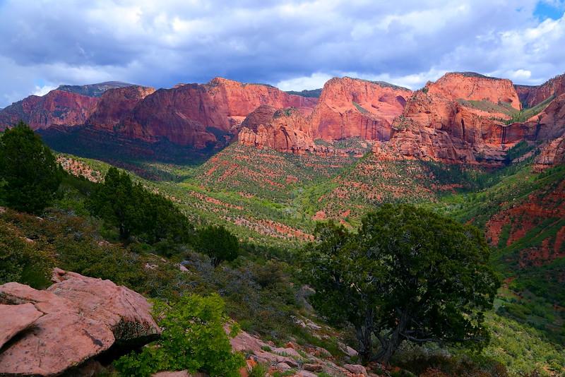 IMG_6748 Kolob Canyons, Zion National Park