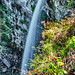 2019 Waterfalls