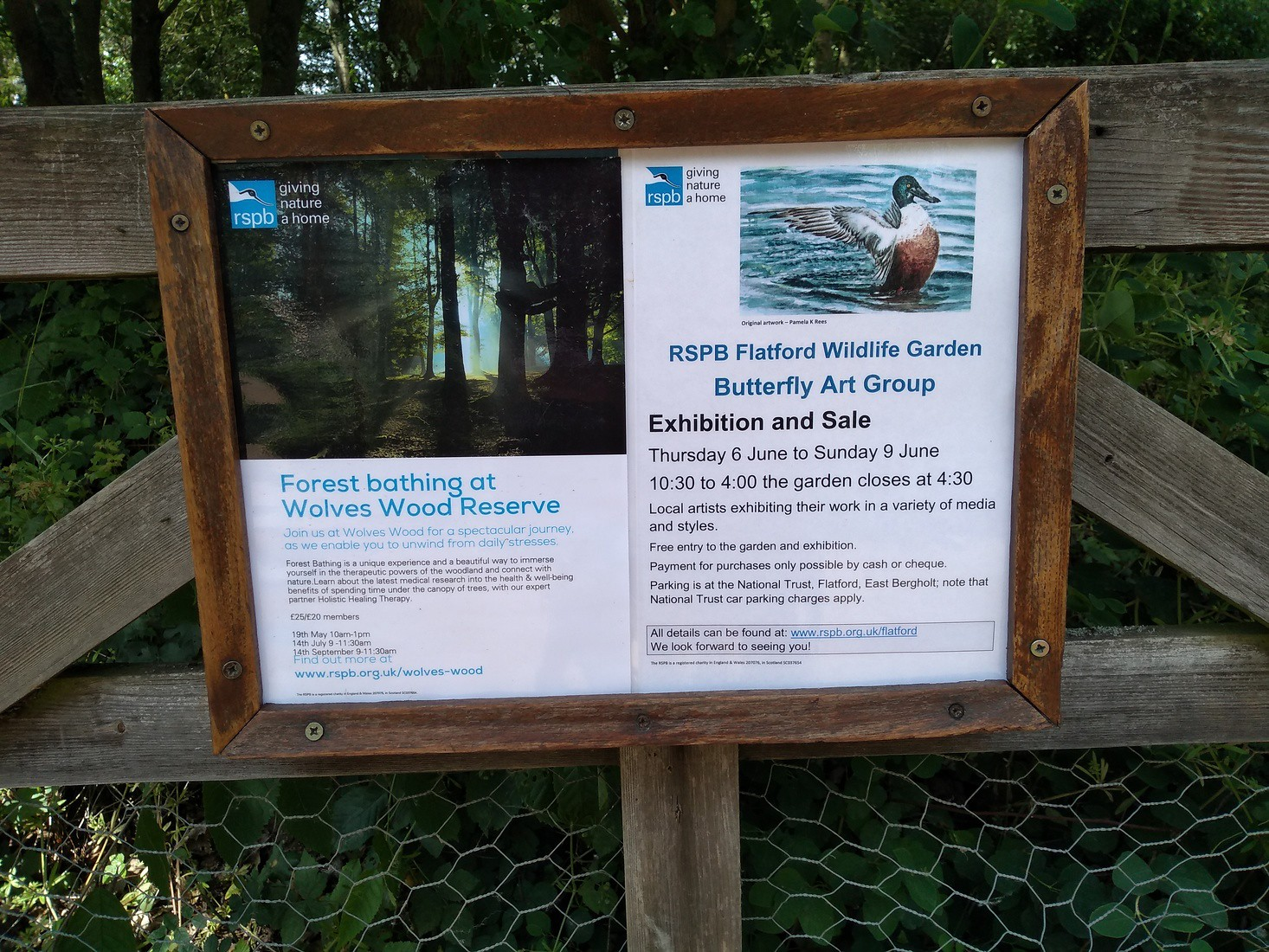 RSPB and Forest Bathing Coincidentally