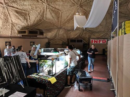 San Bernardino | Repticon