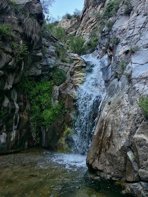 Mill Creek Falls 6/7/19