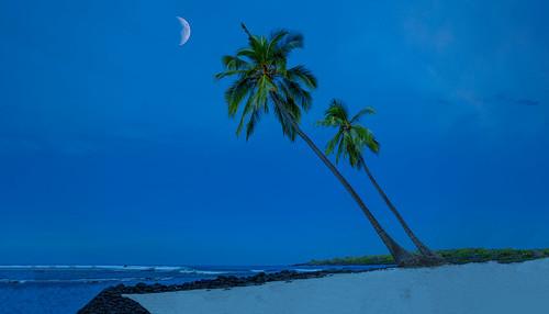 big island hawaii night sky moon fourseasons four season bigisland resort art color sand beach palm tree ocean breeze joelourenco
