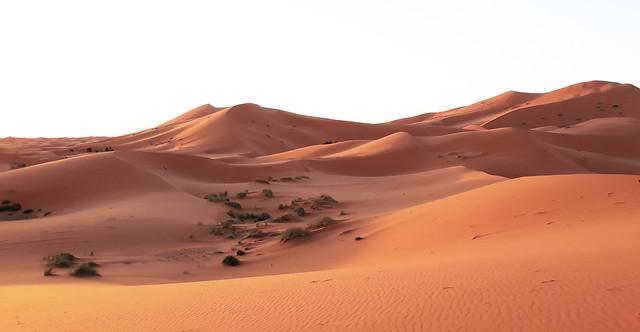Marocco. Sachara 06