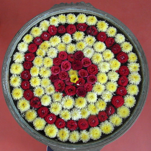 tamil nadu flower moon (2)