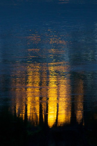abstract blue colorful evening gold nature pretty reflection river sacramentoriver spring sunset trees water