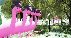 Flamingos Can (Can Can) Relay - FF19 Campsite