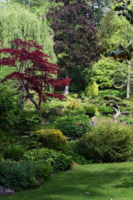 jardin japonais21