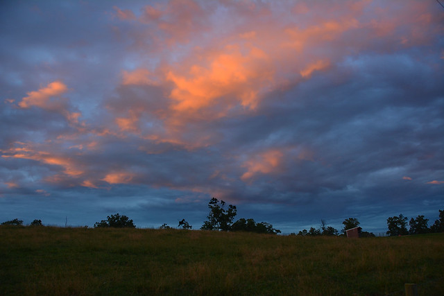 Pretty 08 June 2019 Sunset