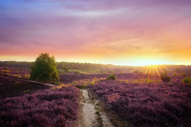 Posbank sunrise glory