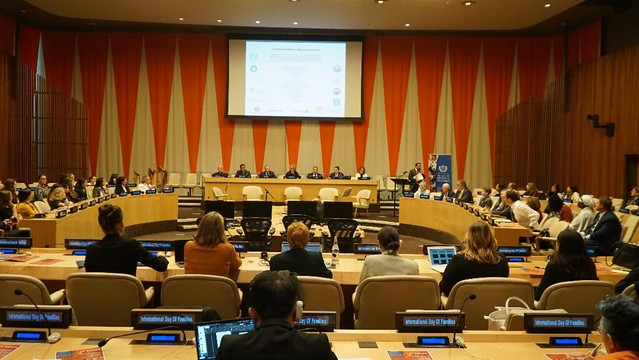 USA-2019-05-15-International Day of Families Observed at UN