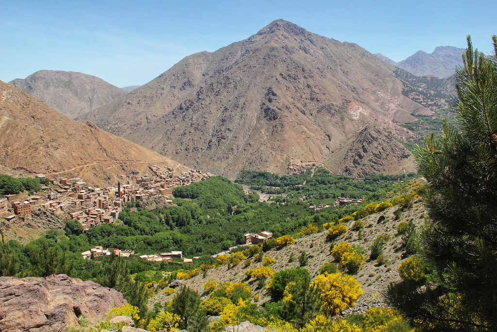 Looking back on to Imlil as we left on the first day. I love the colourful yellow flowers on the lower mountain slopes