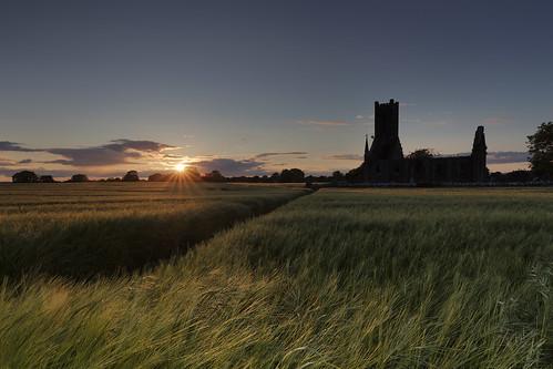 ballynafagh church ruin sunset sun barley field kildare ireland