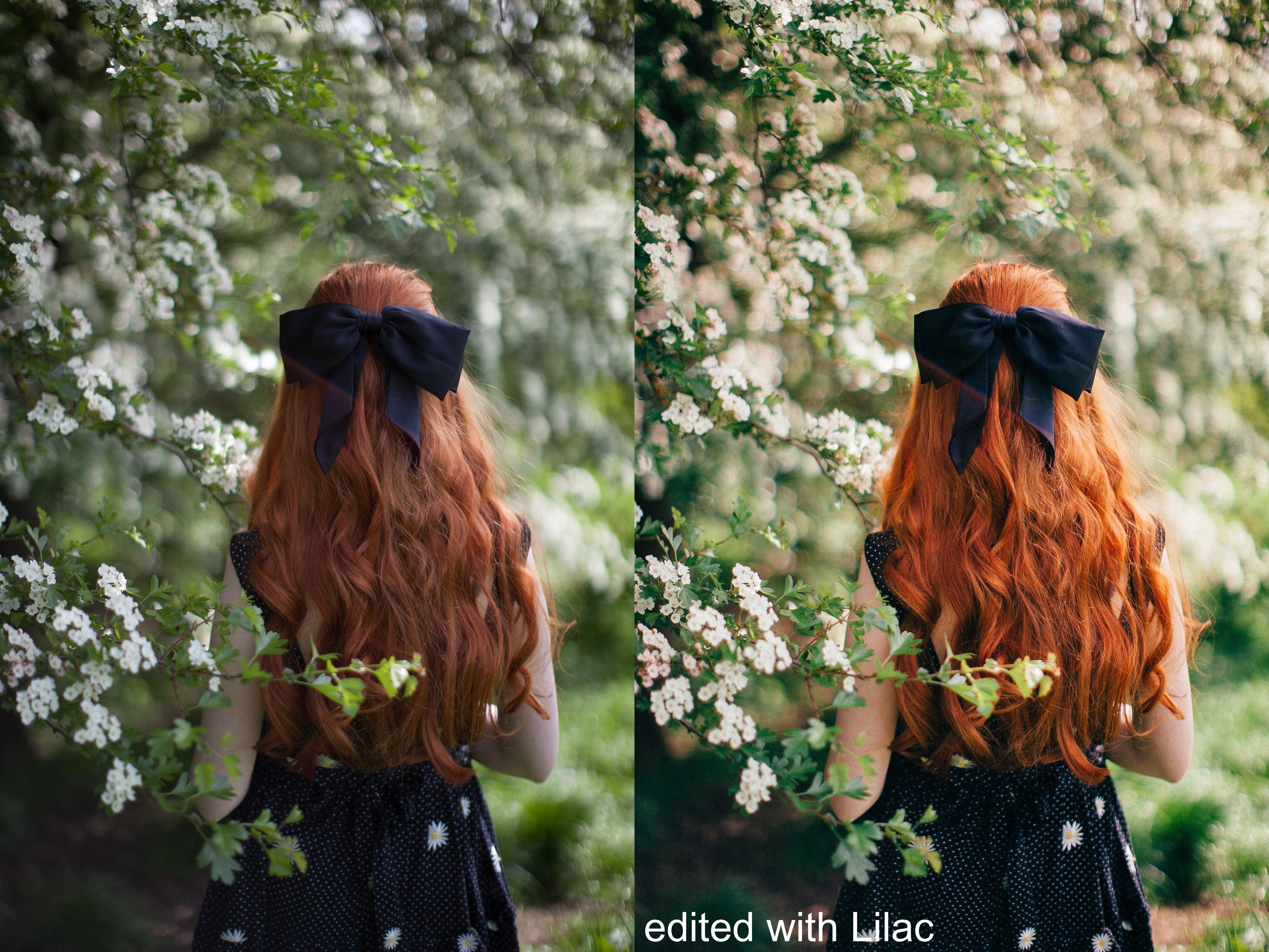 lilac edit