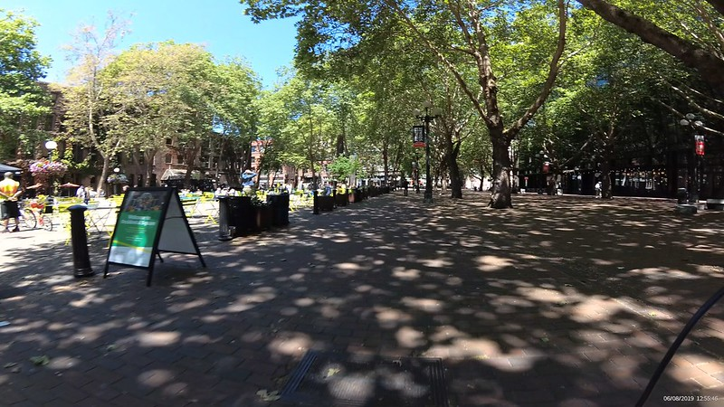 Occidental Park is brick and trees with many benches and places for people.