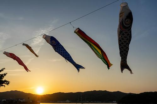 naruto sunset carp sky tokushimaprefecture 徳島県 shikoku 四国 日本 japan bicycletriparoundshikoku 5月 五月 早月 gogatsu satsuki fastmonth 2018 令和元年 summer may reiwa