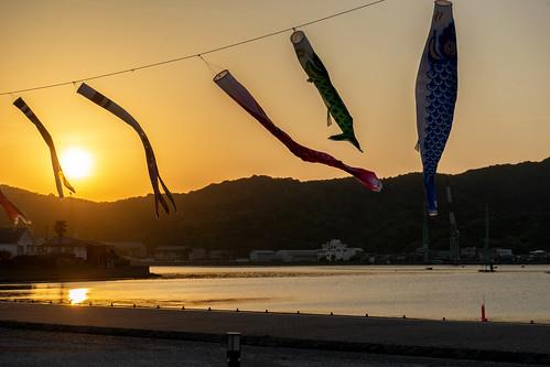 naruto sunset carp tokushimaprefecture 徳島県 shikoku 四国 日本 japan bicycletriparoundshikoku 5月 五月 早月 gogatsu satsuki fastmonth 2018 令和元年 summer may reiwa