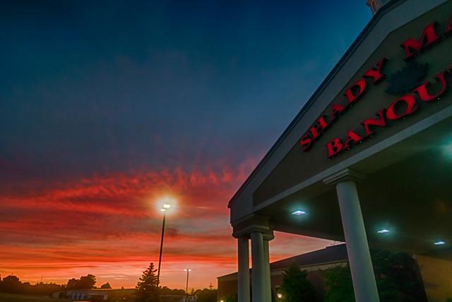 A Shady Sunset