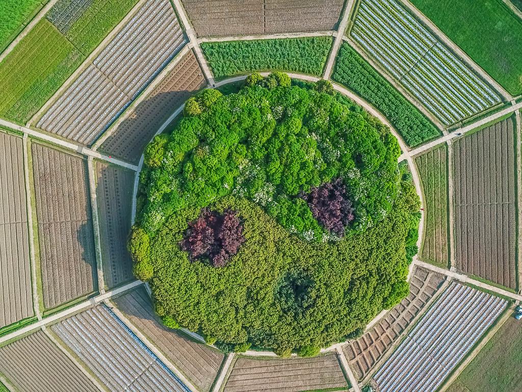 hangzhou-parks-alexisjetsets-8