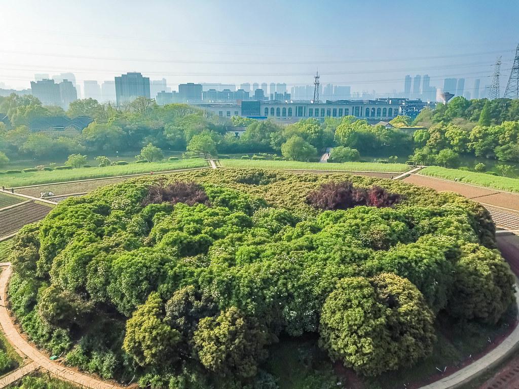 hangzhou-parks-alexisjetsets-7